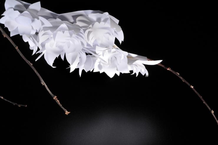 Création florale (Crédit photo Nelly Valais)